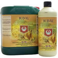 bud xl by house u0026 garden