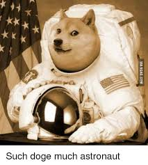 Such Doge Meme - via 9gagcom such doge much astronaut 9gag meme on me me