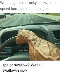 Speed Bump Meme - when u gettin a trucky sucky hit a speed bump an nut in her gut an