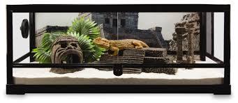 build a snake habitat u2013 terrarium décor and supplies petsmart