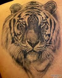 tiger photo num 1547