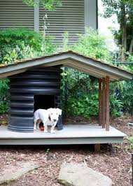 backyard ideas for dogs 8 backyard ideas to delight your dog