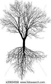 clip of bare tree with roots k20834058 search clipart