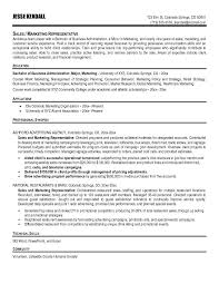 resume objective for promotion sales resume examples