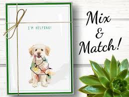 funny dog christmas cards boxed set of 15 funny dog holiday