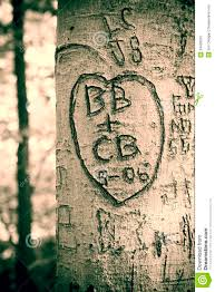 initials carved in tree tree royalty free stock image image 34408316