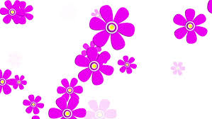 flower clip flying flowers animation stock footage 3482111