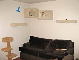 cat wall furniture kitty cat and puppy dog