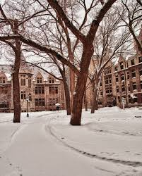 winter in hyde park chicago illinois visually literal