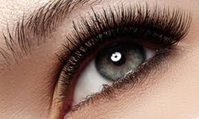 3d extensions 3d volume eyelash extensions adorn 1803 groupon