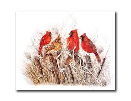 Cardinal Bird Home Decor by Amazon Com Red Birds Cardinals In Grass Animal Wildlife Wall