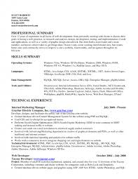 Sql On Resume Cover Letter Summary On Resume Example Example Of A Summary On