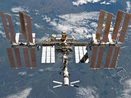 outside space sea plankton found living on outside of space station russians say