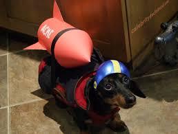 Weiner Dog Halloween Costumes Weiner Dog Halloween Costumes Photo Album 25 Dog Halloween