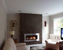 Regency Gas Fireplace Inserts by Regency Gas Fireplace Houzz