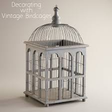 Bird Cage Decoration Birdcages A Decorative Trend