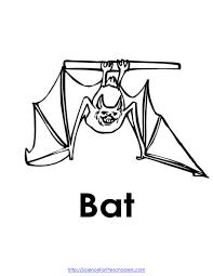 bats preschool lesson plan preschool science experiments