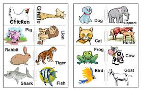 picture cards free printable flash cards worksheet factory