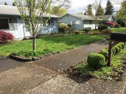 before and after residential landscape cleanup in eugene oregon