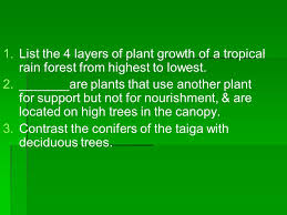 Tropical Rainforest Plant List - tropical rainforest plants and trees in the list the rainforest