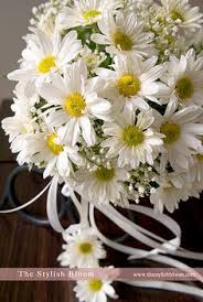 Daisy The Flower - daisies for the flower girls to throw instead of rose pedals