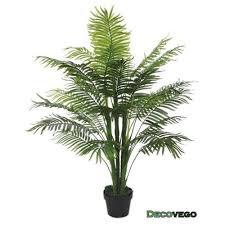 plante verte bureau grande plante pas cher plante verte bureau maison retraite chfleuri