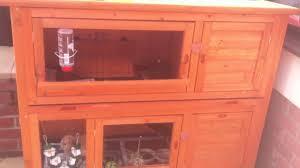 Rabbit Hutch Set Up Mini Lop Rabbit Set Up Youtube