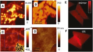 spectroscopic investigation of defects in two dimensional