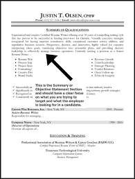 resume introduction example with summary qualification resume