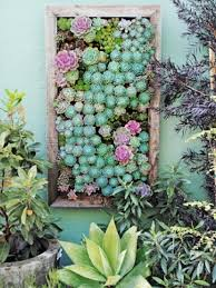 Large Succulent Planter Succulent Gardens For Small Spaces Dengarden
