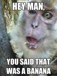 Funny Monkey Memes - 45 very funny monkey meme images gifs photos pictures picsmine