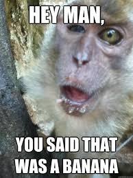 Sexy Monkey Meme - 45 very funny monkey meme images gifs photos pictures picsmine