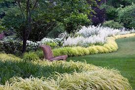 planting design ornamental grass hedges gardens