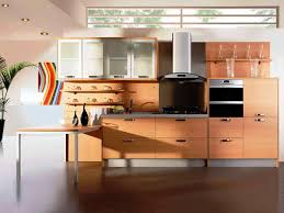 Kitchen Cabinets Thermofoil Frameless Shaker Kitchen Cabinets Best Home Decor