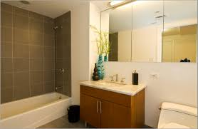 ideas for small bathrooms on a budget home design