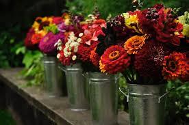 farm fresh flowers 4 ways to keep cut flowers alive longer vandyke gardens