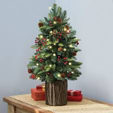 smallmas trees photo ideas decorated delivered flocked