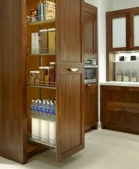 kitchen cabinet entrancing modular kitchen designs ways glossy