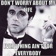 Scarface Meme - 13 best say hello to my little friend images on pinterest movie