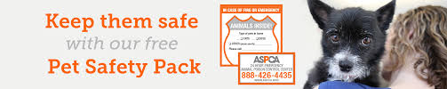 Free Home Pet Safety Pack Emergency Rescue Window Sticker Aspca