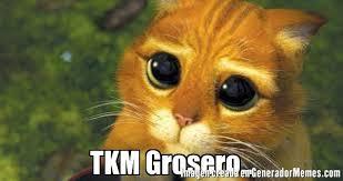imagenes groseras de gatos tkm grosero meme de gato con botas imagenes memes generadormemes