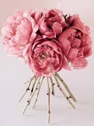 bulk peonies beautiful peonies flower power peony flowers and