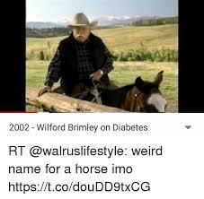 Diabetes Meme Wilford Brimley - 2002 wilford brimley on diabetes rt weird name for a horse imo