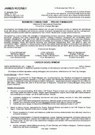 Business Consultant Resume Download Sample Business Resume Haadyaooverbayresort Com