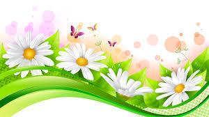 flowers daisies butterflies spring fresh wave leaves flowers