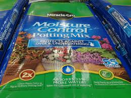 Soil Mix For Container Gardening - transplanted starts into my own mix of soil and compost mistake