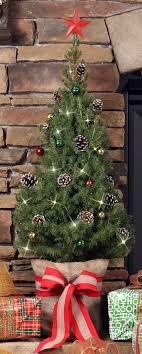 live christmas tree the live christmas tree table top trees mickman
