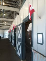 Kentucky Flags Belonging And Breed Horse And Home U2013 The Return Of Native Nordic