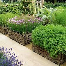 best vegetable garden layout in the background best vegetable