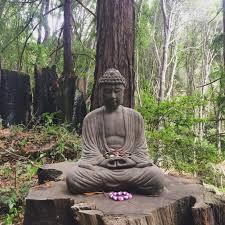 buddhist thanksgiving prayer blessings u0026 prayers archives